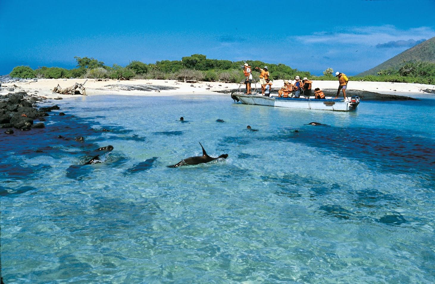 Luna De Miel En Galapagos Travel Time Ecuador