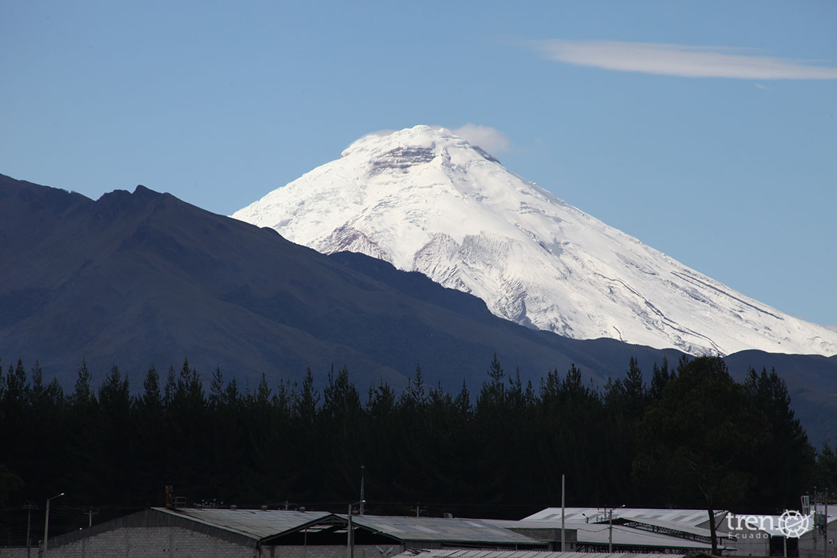 Tren de los Volcanes _3 IMG_1651