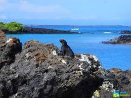 Galápagos Especial Isabela2
